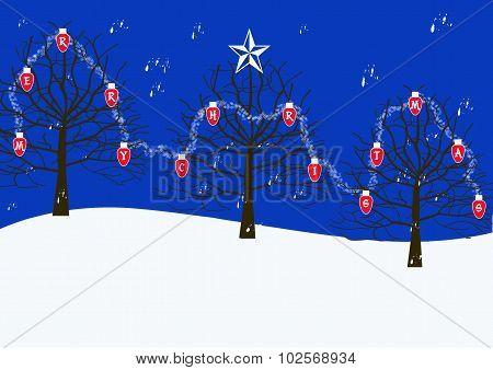 Christmas Lights On Bare Trees
