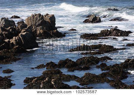 Tide Pools At Low Tide