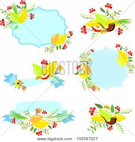 Vector Collection Of Labels And Elements For Sukkot
