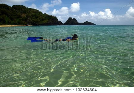 Diving in a crystalline sea beach in Fernando de Noronha, Brazil