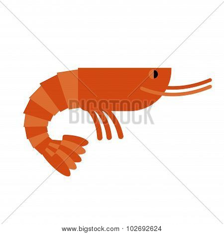 Shrimp. Marine Cancroid. Boiled Shrimp Delicacy. Cooked Orange Shrimp On White Background.