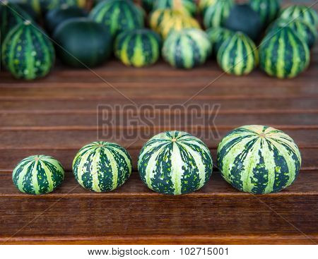 Cucurbita pepo still life green pumkins in a row