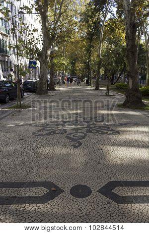 Avenida Da Liberdade Tree-lined Street In Lisbon