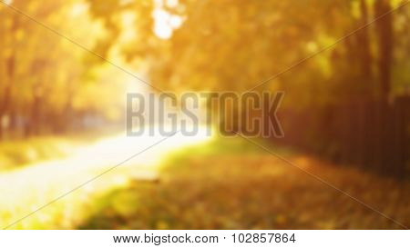natural blur bokeh background of autumn park