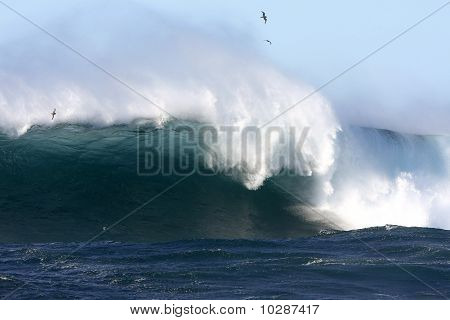 Giant surf wave breaking