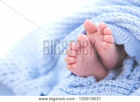 Cute Foot Newborn Baby, Close Up