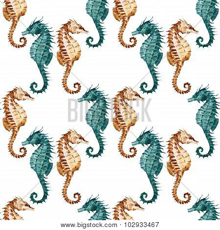 Watercolor seahorse pattern