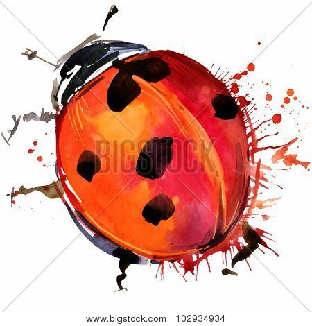 ladybird beetle T-shirt graphics, ladybird illustration with splash watercolor textured background.