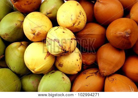 Variety of Tender coconuts