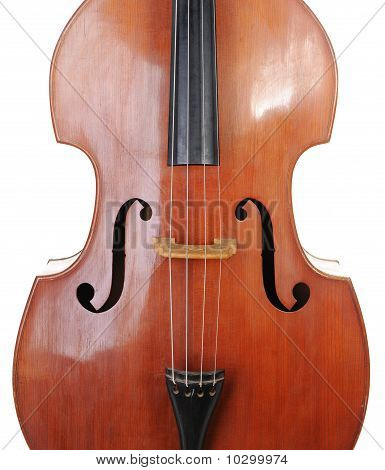 classical contrabass.