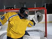 ice hockey goalkeeper  player on goal in action poster