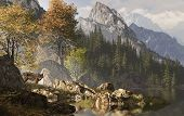 Wolf near a lake in a Rocky Mountain landscape. poster