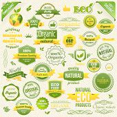 Collection Vector Organic Food, Eco, Bio Labels and Elements. Logo elements for Food and Drink. Restaurants and Organic Products Vector Illustration poster
