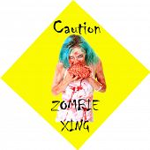 Caution ZOMBIE XING sign. Zombies are a menace and pay no attention to traffic laws while on their search for Human Brains. Everyone needs a Yellow Caution Zombie Crossing Street sign. On white  poster