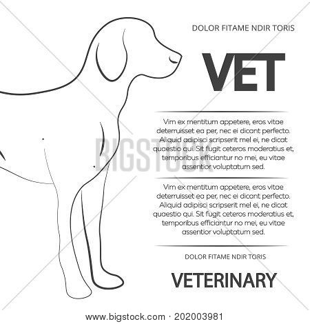 Veterinary poster design with line dog. Vector banner veterinary with animal illustration