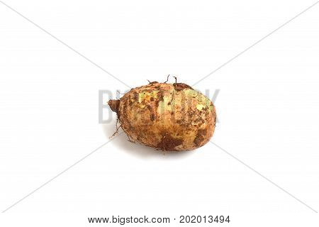 Wild Yams And Soil Fraction On Skin