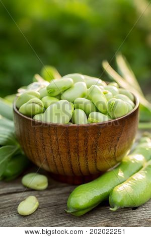 Fresh green broad beans in a bowl in the open air. Healthy food.