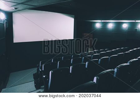 Cinema Auditorium. 3D Rendering.