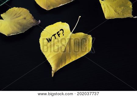 The inscription wtf on yellow autumn leaf and a sad face. Fallen leaves scattered on a wooden lacquered Board. The concept of autumn