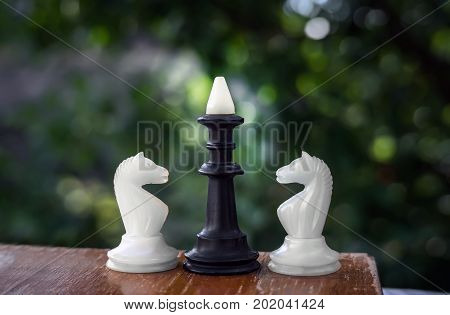 Two White Horse And Black King Chess Piece