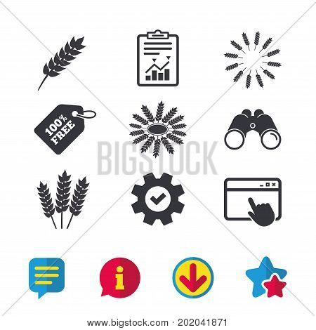 Agricultural icons. Gluten free or No gluten signs. Wreath of Wheat corn symbol. Browser window, Report and Service signs. Binoculars, Information and Download icons. Stars and Chat. Vector