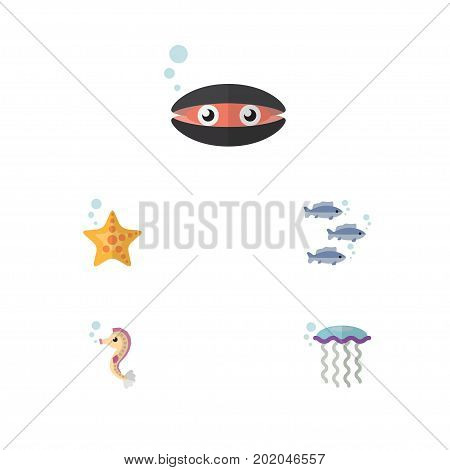 Flat Icon Sea Set Of Tuna, Hippocampus, Sea Star And Other Vector Objects