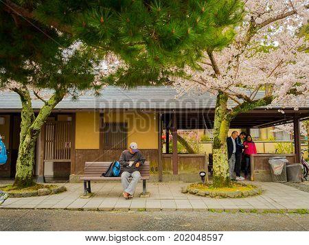 HAKONE, JAPAN - JULY 02, 2017: Unidentified people walking and enjoying in hanami park during cherry blossom season in Kyoto, Japan.