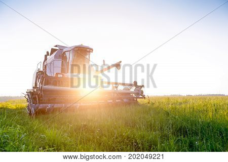 Photo of combine harvester in field at summer. Lensflare effect