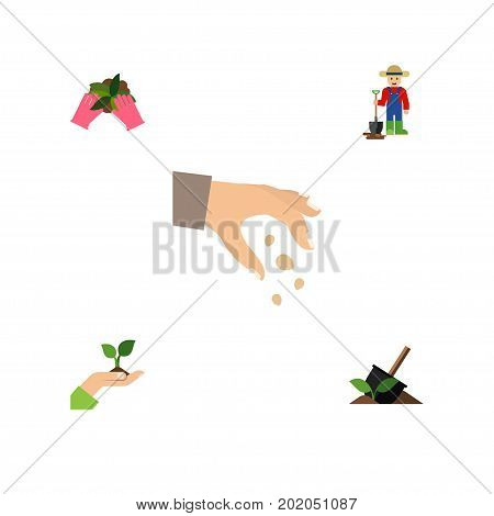 Flat Icon Sow Set Of Sow, Man, Plant And Other Vector Objects