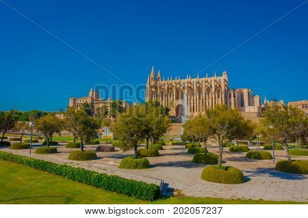 PALMA DE MALLORCA, SPAIN - AUGUST 18 2017: Beautiful view of Cathedral of Santa Maria of Palma La Seu in a gorgeous blue sky, with a fountain and some trees, in Palma de Mallorca, Spain.