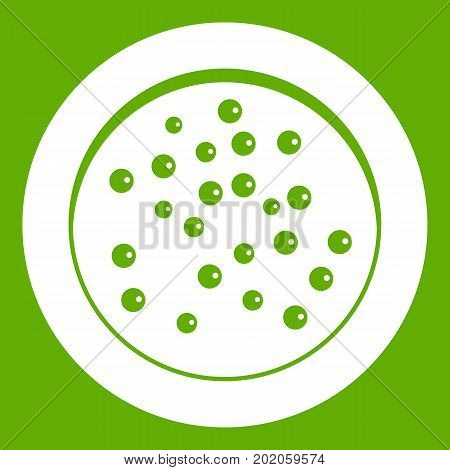 Peppercorns on a plate icon white isolated on green background. Vector illustration