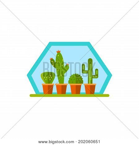 Vector icon of row of potted cactuses. Geometric florarium, flower shop, horticulture. House plants concept. Can be used for topics like hobby, botany, leisure poster