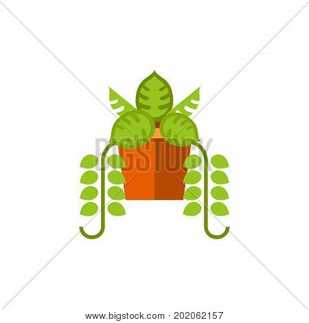 Vector icon of green plant in pot. Potted plant, horticulture, growth. House plants concept. Can be used for topics like gardening, hobby, botany