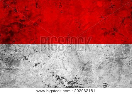 Flag of the Indonesia against the background of the stone texture