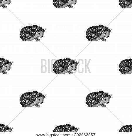 Hedgehog.Animals single icon in monochrome style vector symbol stock illustration .