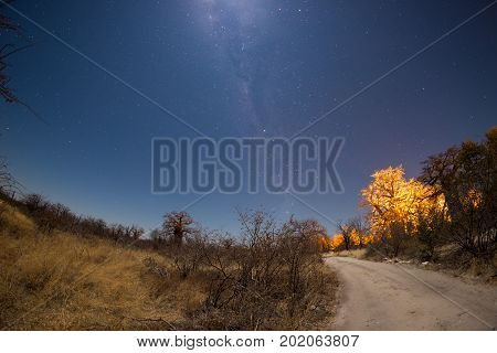 Starry Sky, Milky Way Arc And Moon, Captured From The Kalahari Desert In Botswana, Africa. Moonlight