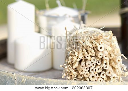 Ornamental plants and decorative objects for a wedding decoration