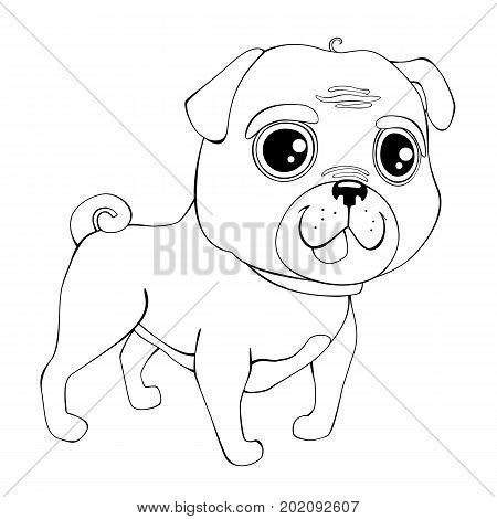 Outline pug. Isolated vector illustration. Illustration of dog pug breed.