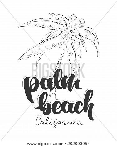 Palm Beach California T-Shirt design vector illustration
