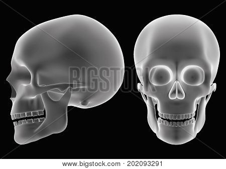 Halloween Skull Over A Black Background Like An Hologram Or Radiography