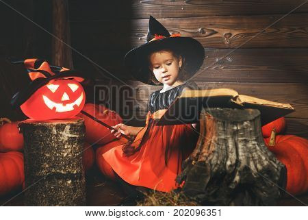 Halloween. little witch child conjures with book of spells magic wand and pumpkins.