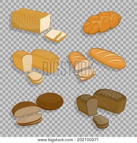 Set of bakery products isolated on a transparent background. Fresh pastries, rye bread, wheat bread loaf, sliced for sandwiches and toast, bread. Vector Illustration for your projects.