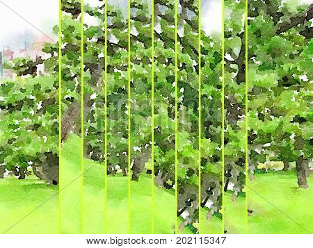 Digital watercolor painting of Japanese Black Pine Trees on a field of grass fragmented into vertical strips with space for text.
