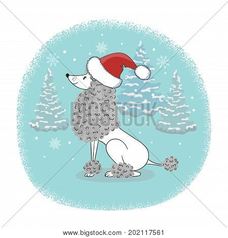 Christmas card with cartoon poodle dog in Santa hat. Vector holiday poster.