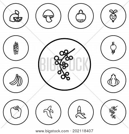 Set Of 12 Editable Kitchenware Outline Icons. Includes Symbols Such As Turnip, Beet, Sweet Pepper And More