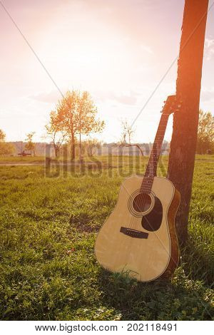 Acoustic guitar by the tree on the park background