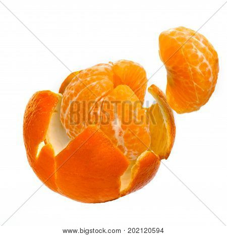 Peeled Fresh Tangerine