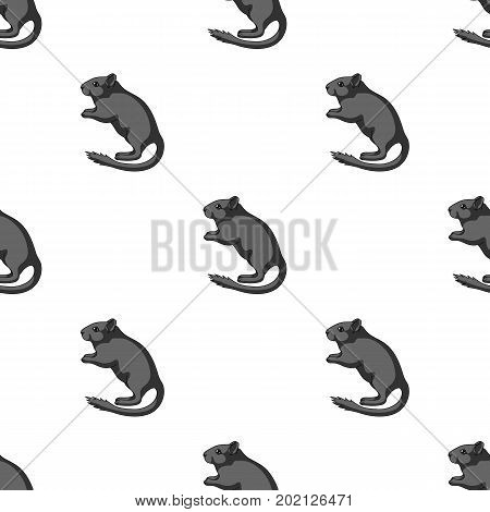 Gray gerbil.Animals single icon in monochrome style vector symbol stock illustration .