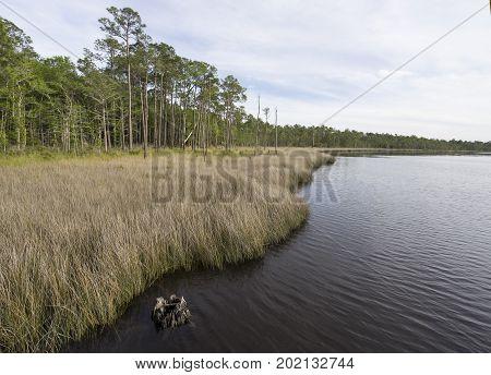 Tarkiln Bayou Preserve State Park on Perdido Bay.