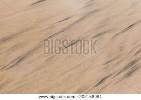 Wet Shore Sand Background Texture